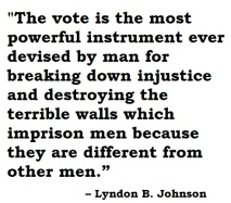 johnson on voting