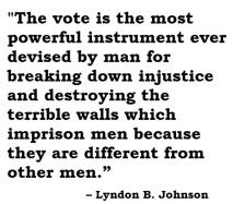 johnson on voting