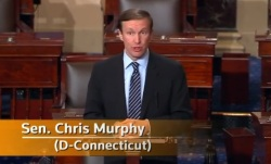 chris murphy gun vote